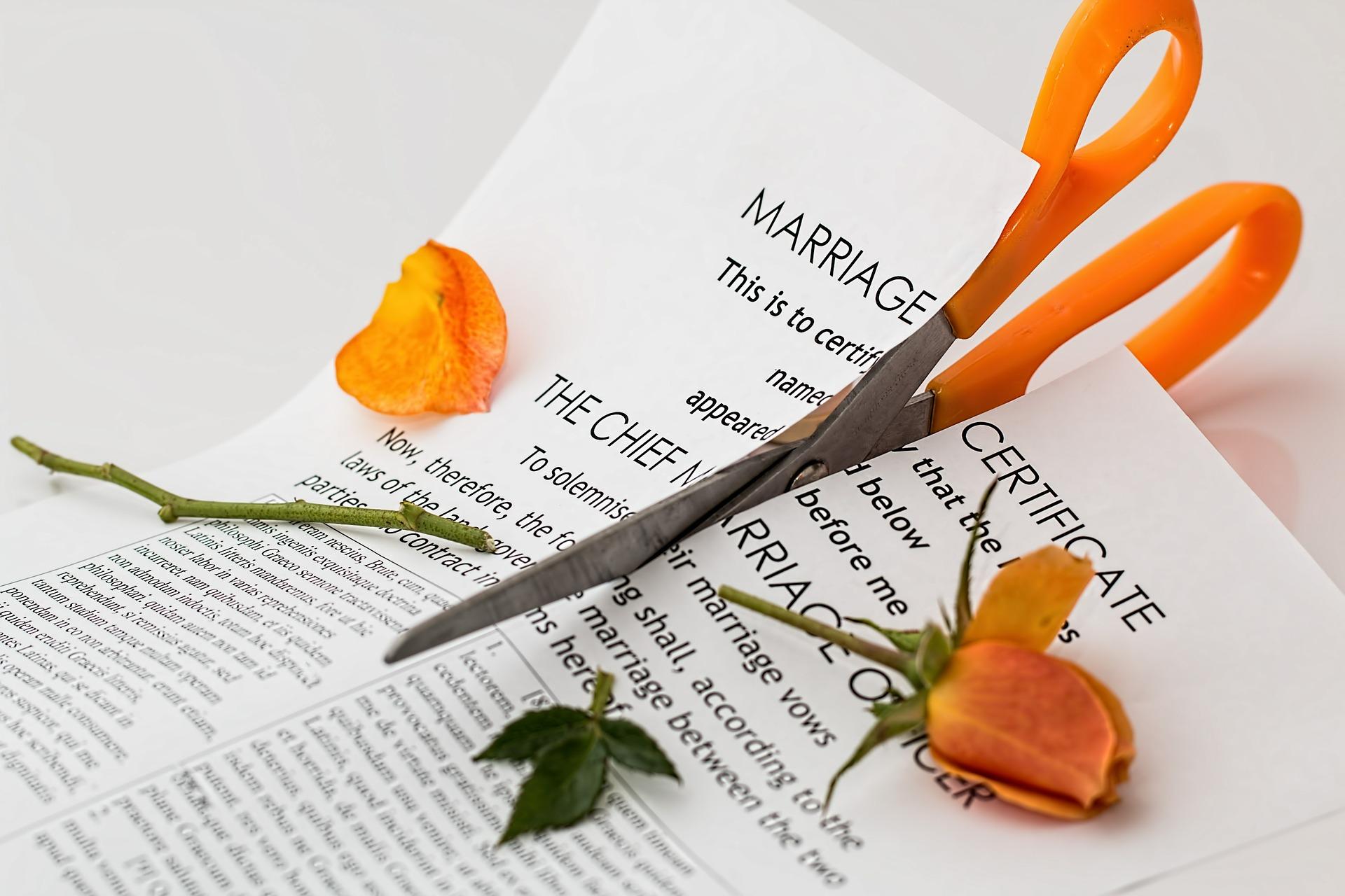Skyrybos-vyras-zmona-divorce-seima-liudijimas